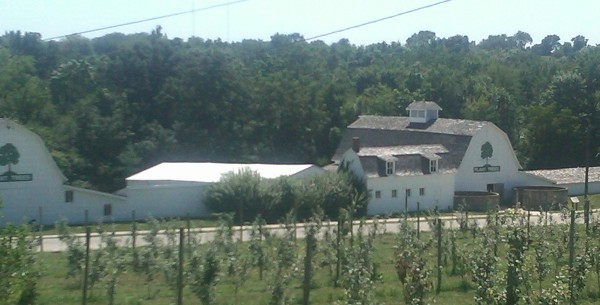 View of Morton Barns with tent