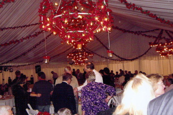 Image of Lincoln NE party tent rental decorated with roses and lights