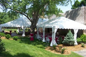 Image of a series of tents set around a tree for a backyard wedding reception