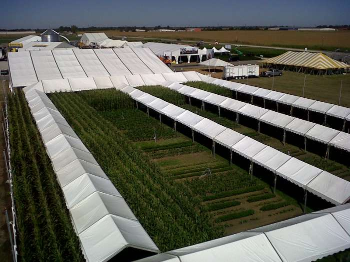 A maze of walkways at Farm Progress that allows visitors to view the fields